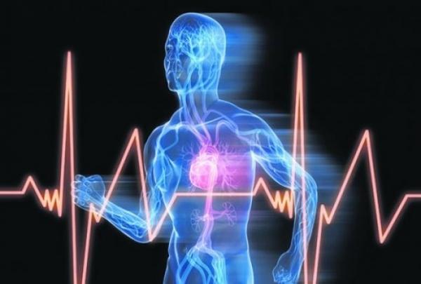 kad srce preskace sledi mozdani udar